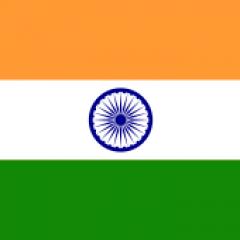 רישום פטנט הנוגעים לשחיטת פרות בהודו – האם יושפע מהאיסור החדש?